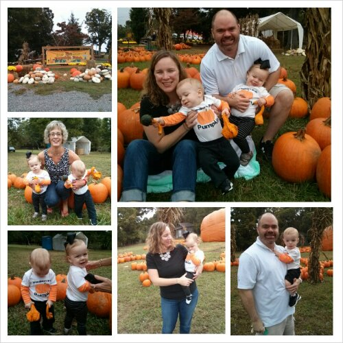 Pumpkin-patch-2013